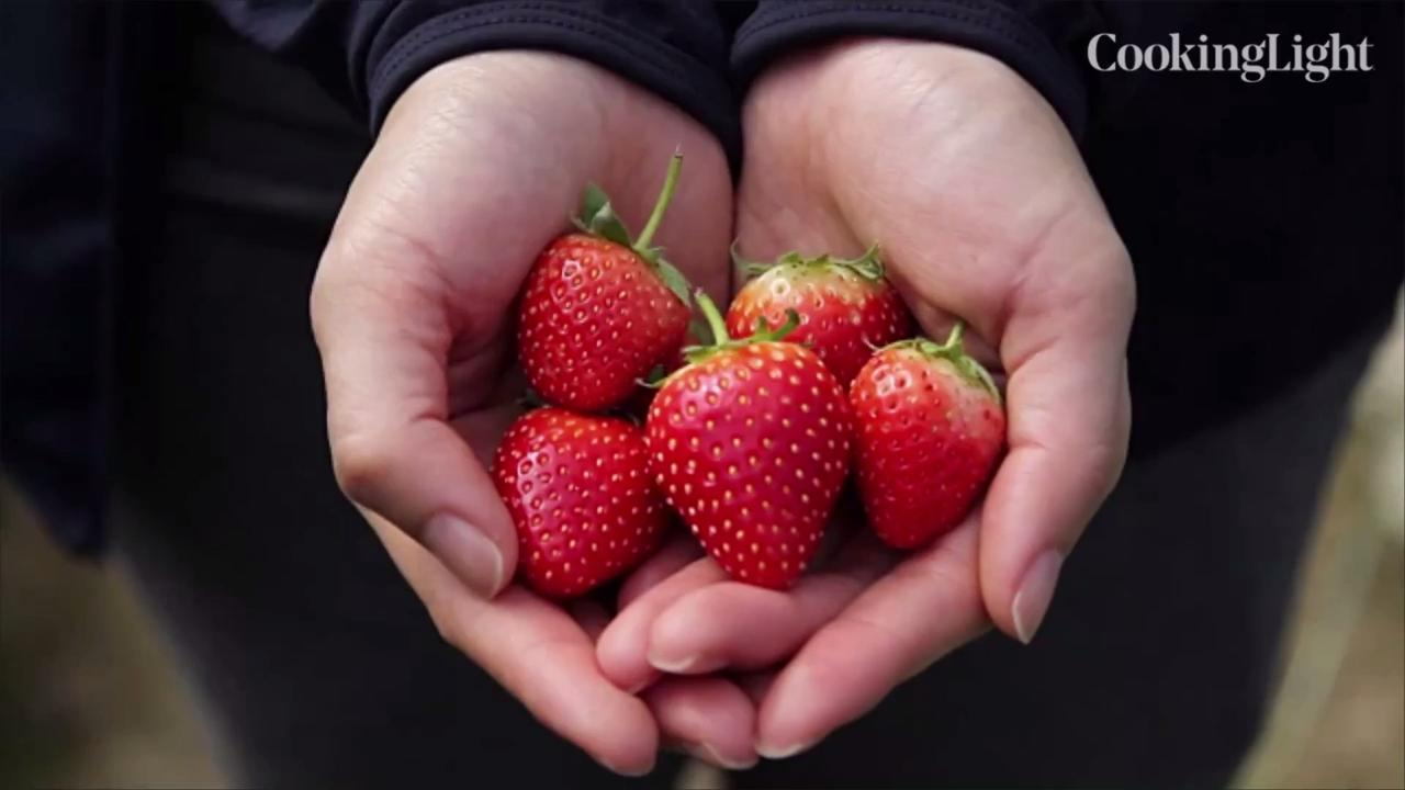 10 Top Anti-Inflammatory Foods