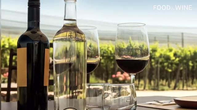 Drink These 25 Bottles and Become a Wine Master
