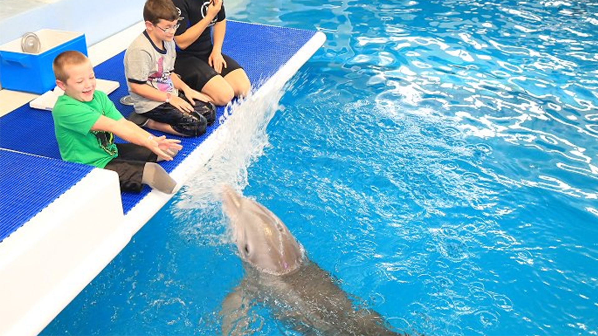 7-Year-Old Boy with Prosthetic Legs Becomes 'BFFs' with Winter the Tailless Dolphin: 'She's Just Like Me!'