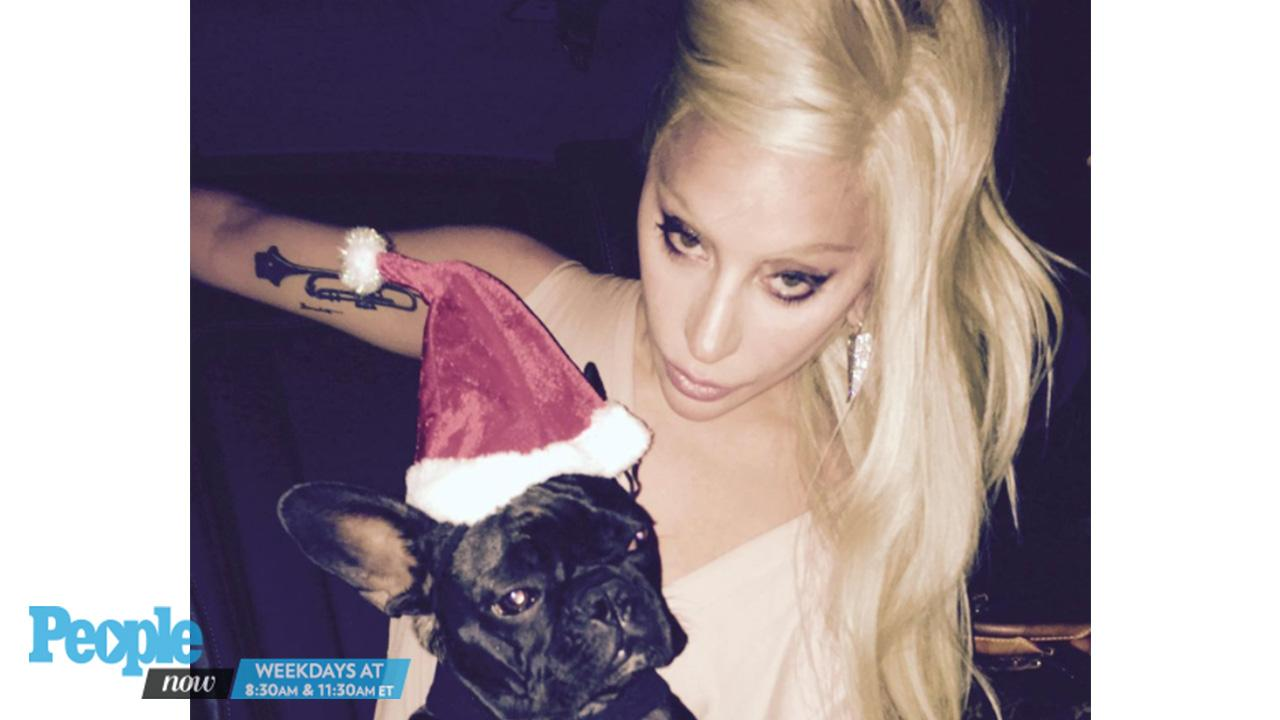 Lady Gaga Welcomes a New Family Member — See Her Adorable Puppy!