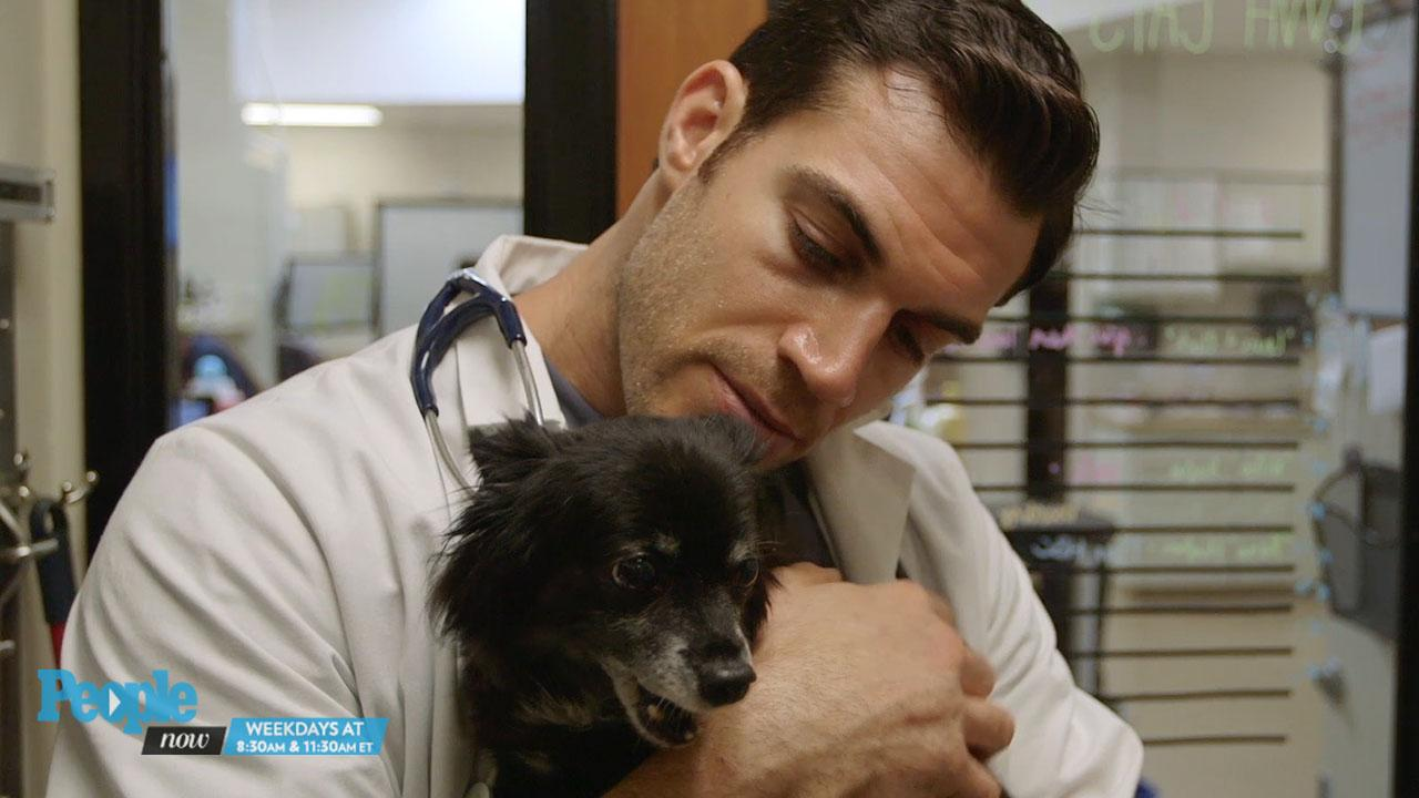 Meet the (Sexy) Pet Vet with the Answers to All of Your Animal Questions