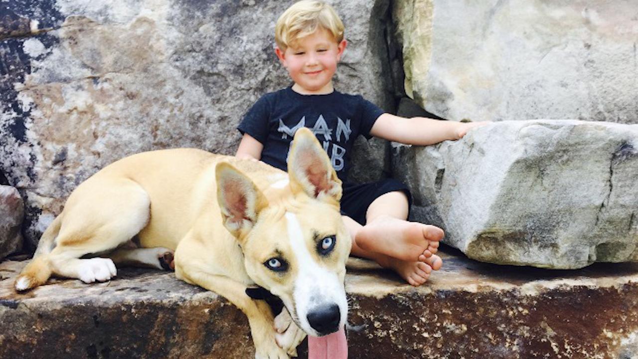 Kim Zolciak-Biermann Shocks Fans By Sharing New Photo of 6-Year-Old 'Big Boy' Son Kash
