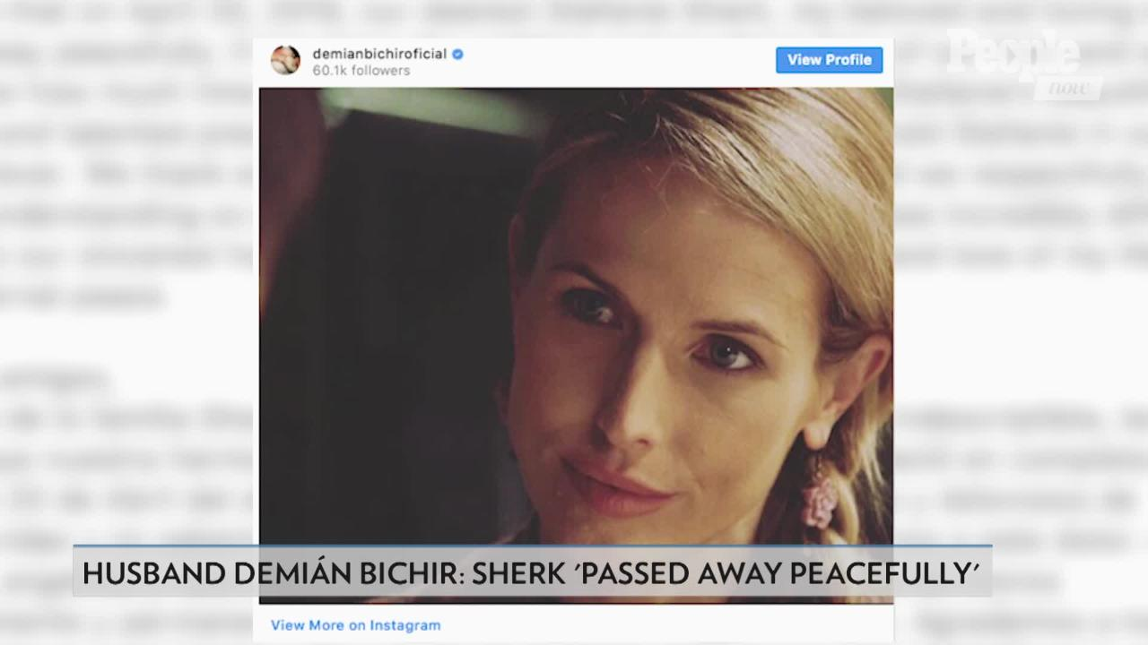 What to Know About Stefanie Sherk, Oscar Nominee Demián Bichir's Wife Who Died at 43