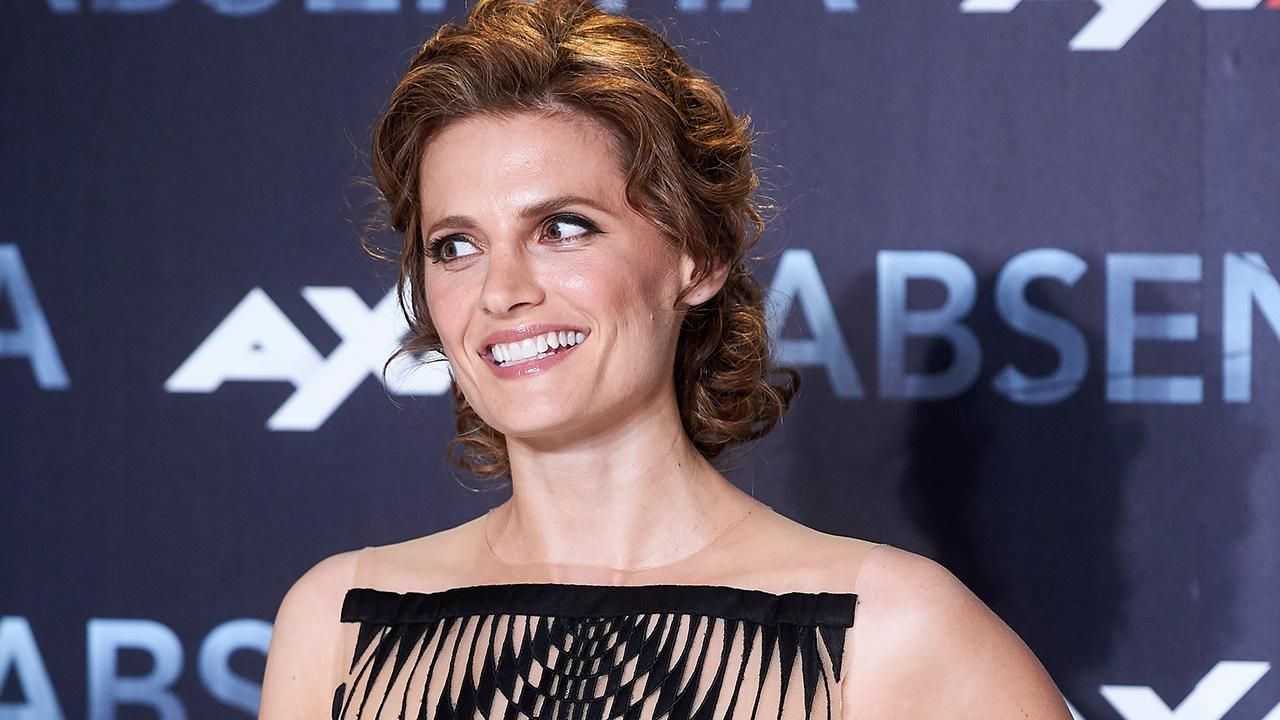 Could There Be a Castle Reboot? Stana Katic Says 'Wait and See'