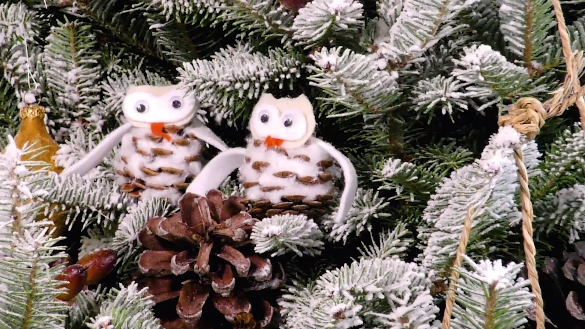 WATCH: 6 Easy Winter Craft Ideas