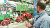 Celebrating British Flowers Week: Arranging with alstroemerias