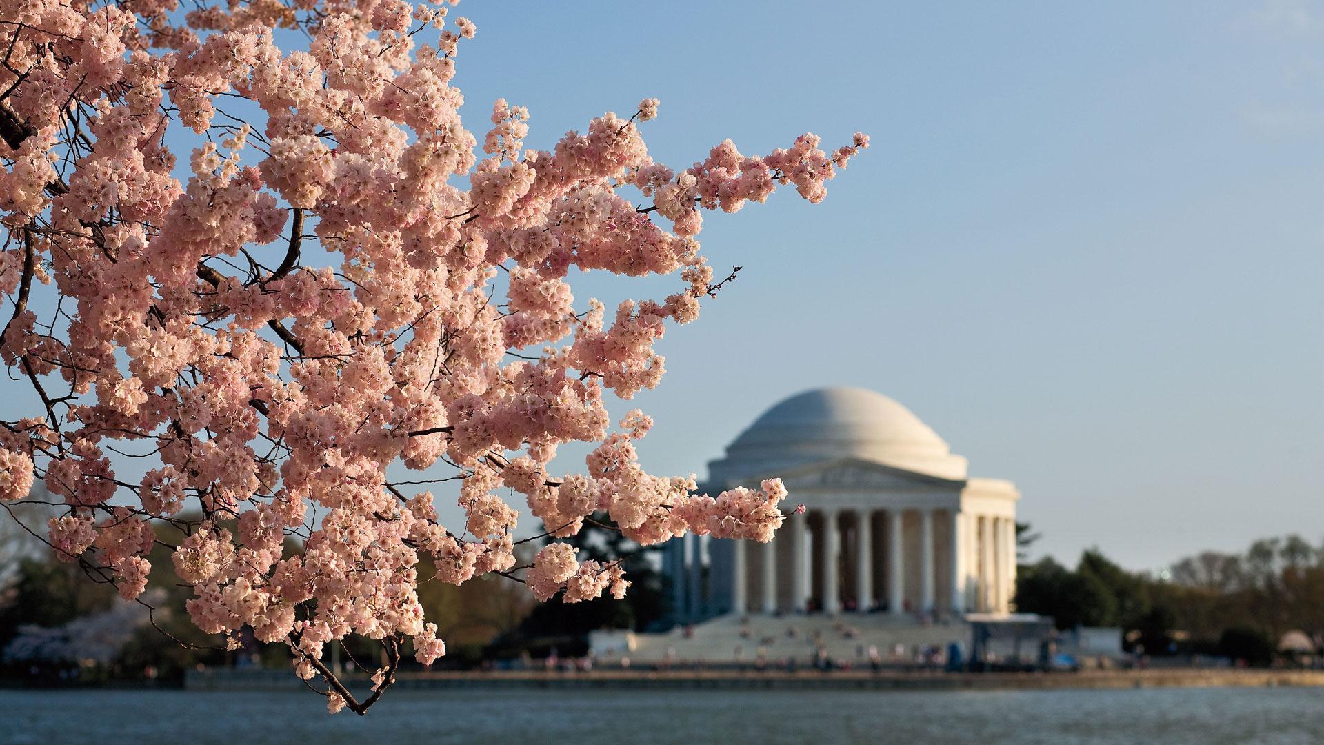 10 Things You Should Do In Washington D C Southern Living