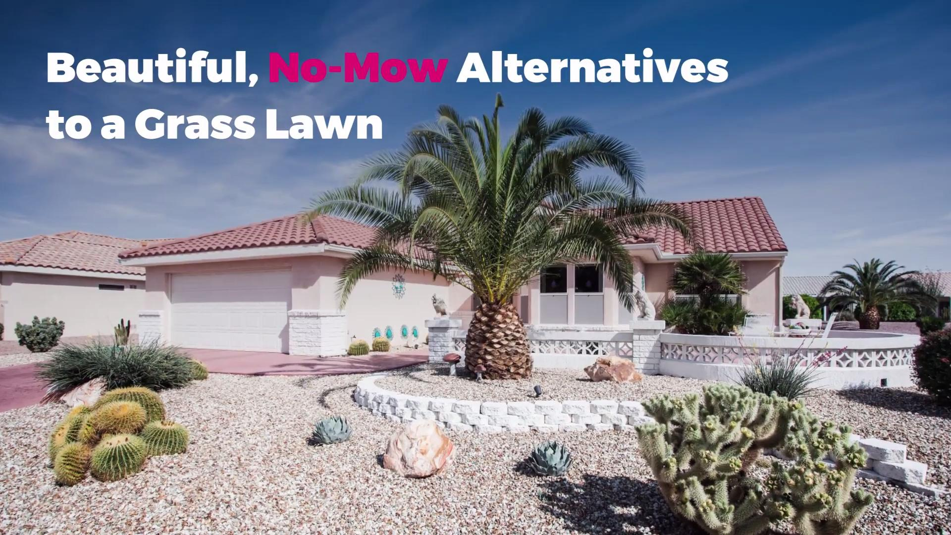Beautiful No Mow Alternatives To A Grass Lawn Real Simple